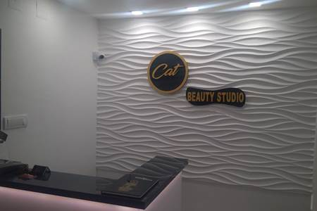 Slika Beauty Studio Cat
